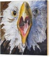 Screaming Eagle 2004 Wood Print