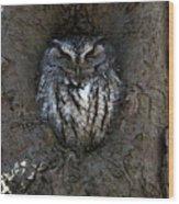 Screech's Rest Wood Print