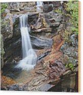 Screw Auger Falls - Maine  Wood Print