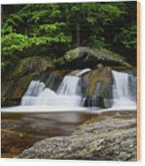 Screw Auger Falls Upper 2 Wood Print