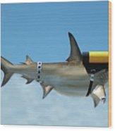 Scuba Shark Wood Print