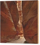 Sculpted By Wind And Water - Petra Wood Print