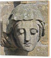 Sculpted Head Of Woman. Wood Print