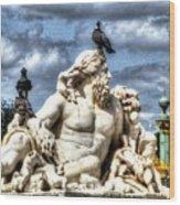 Sculptur And Birds Paris  Wood Print
