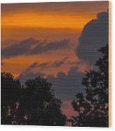 Mulberry Tree Sunrise Wood Print