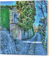 Sea And Mountains Hike Narrow Roads - Creuza De Ma E Creuza De Munte Wood Print