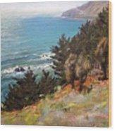 Sea And Pines Near Ragged Point, California Wood Print