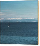 Sea And Snowy Alps Wood Print