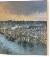 Sea And Stones Wood Print