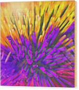 Sea Anemone Abstract - Kooosh Ball Wood Print