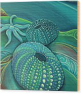 Sea Anemone Kina By Reina Cottier Wood Print