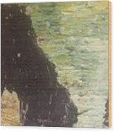 Sea Arch Wood Print
