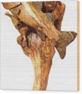 Sea Bass Sculpture Wood Print