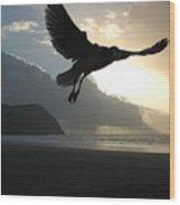 Sea Bird 3 Wood Print