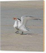 Sea Bird Song Wood Print