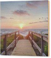 Sea Birds At Sunrise Wood Print