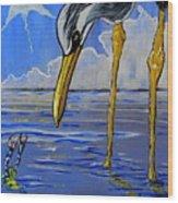 Sea Birds Wood Print
