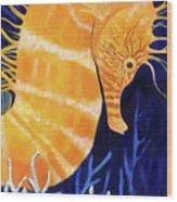 Sea Biscuit Wood Print