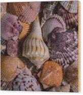 Sea Bones 20 Wood Print