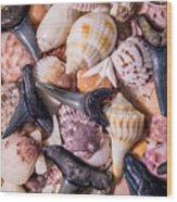 Sea Bones 22 Wood Print