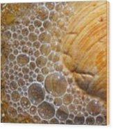 Sea Bubbles Wood Print