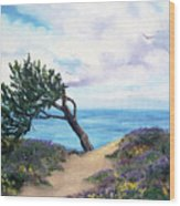 Sea Coast At Half Moon Bay Wood Print