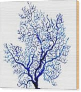 Sea Coral Wood Print