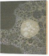 Sea Foam Over Sand Dollars Wood Print