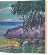 Sea Grapes By Lois Wood Print