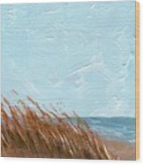 Sea Grass On Tybee Island Wood Print