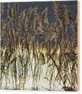 Sea Grass Wood Print