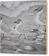 Sea Gulls Dodging The Ocean Waves Wood Print