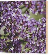 Sea Lavender Wood Print