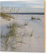 Sea Oats And Blue Sky Wood Print