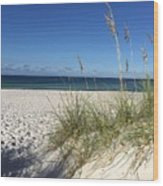 Sea Oats At The Beach Wood Print