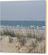 Sea Oats By The Ocean Wood Print