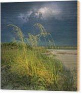 Sea Oats In The Storm Wood Print