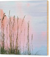 Sea Oats Wood Print by Kristin Elmquist