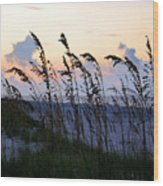 Sea Oats Silhouette Wood Print