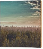 Sea Of Golden Tassels Wood Print