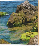 Sea Of Marmara Seashore Wood Print
