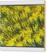 Sea Of Yellow Wood Print