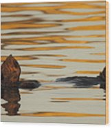 Sea Otter Laying Low In The Water Wood Print