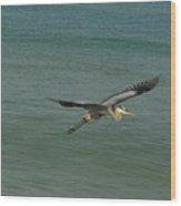 Sea Plane Wood Print