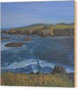 Sea Ranch In Spring Wood Print