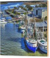 Sea Ray Of Savannah  Wood Print