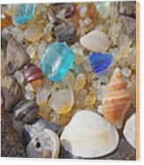 Sea Shells Art Prints Blue Seaglass Sea Glass Coastal Wood Print