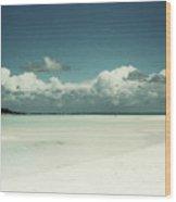 Sea Shells By The Sea Shore Wood Print