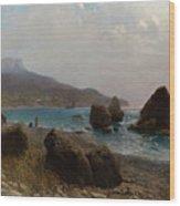 Sea Shore Crimea Wood Print