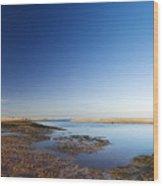 Sea Shore Wells Next The Sea Norfolk Wood Print